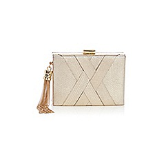 Coast - Gigi clutch bag