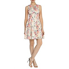 Coast - Debenhams exclusive 'Bossa' print yasmin dress