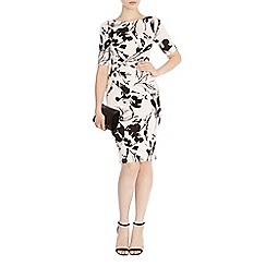 Coast - Surrey print jamilia dress