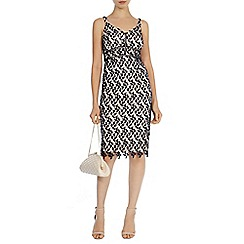 Coast - Hartley lace dress petite