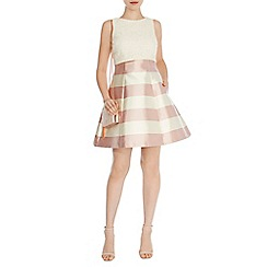 Coast - Vancouver stripe nadinia dress