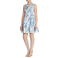 Coast - Cali print yasmin dress