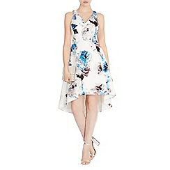 Coast - Carmel print marie dress
