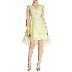 Coast - Pippa-may jacquard dress
