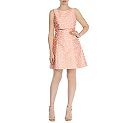 Coast - Daisy-lou jacquard dress