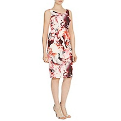 Coast - Berlin print amena dress