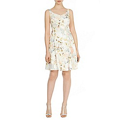 Coast - Magnolia print isla dress