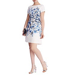 Coast - Hudson Print Davri Dress