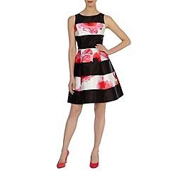 Coast - Millana Dress