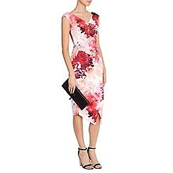 Coast - Adra Print Edris Midi Dress