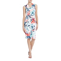Coast - Delphine Print Shift Dress