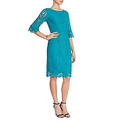Coast - Katrina Lace Shift Dress