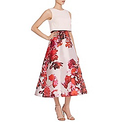 Coast - Madison Floral Overlayer Midi Dress