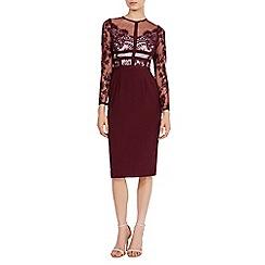 Coast - Debenhams Exclusive malinda lace dress