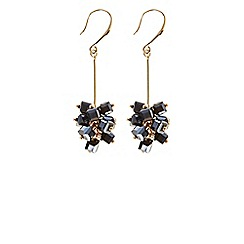 Coast - Annabelle Droplet Earrings