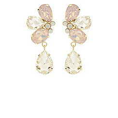 Coast - Gabi statement earrings
