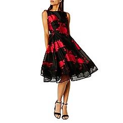 Coast - Debenhams Exclusive Matilda Jacquard Dress