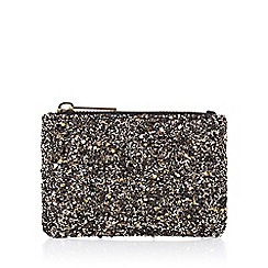 Coast - Paulita Glitter Coin Purse