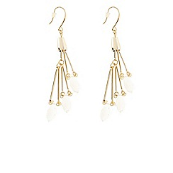 Coast - Pinet Long Line Earrings