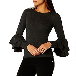 Coast - Raffie Ruffle Sleeve Knit Top