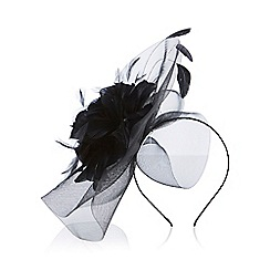 Coast - Kalea large fascinator