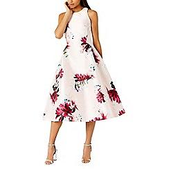 Coast - Minerva floral shorter length dress