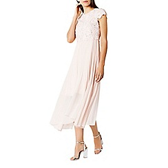 Coast - Darianna dress