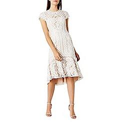 Coast - Dee dee lace dress