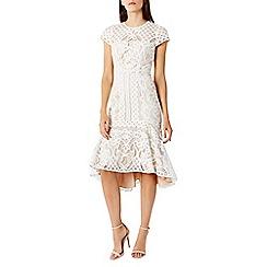 Coast - Dee dee lace shorter length dress