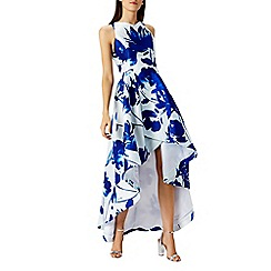 Coast - Roseanna blue printed dress
