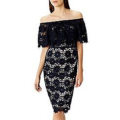 Coast - Patience lace shift dress