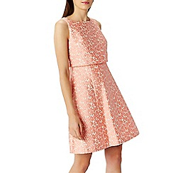 Coast - Daisy lou jacquard dress