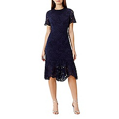 Coast - Linera lace dress