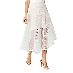 Coast - Mareesha Elin skirt