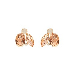 Coast - Fi stud earrings