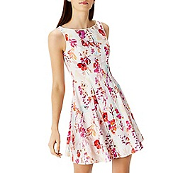 Coast - Carla cotton fit & flare dress