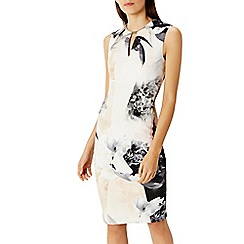 Coast - 'Debenhams Exclusive   Lenox floral shift dress''