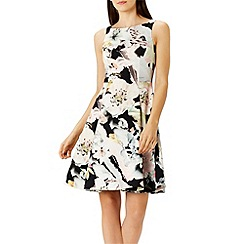 Coast - Debenhams Exclusive - Madele floral print dress