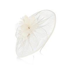 Coast - Jodi flower fascinator