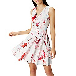 Coast - Debenhams Exclusive - Casis print cotton dress