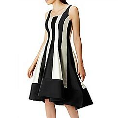 Coast - Aria mono stripe dress