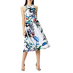 Coast - Botanico full midi dress