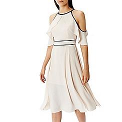 Coast - Victoria plain blush dress