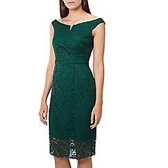 Coast - Green lace 'Zelda' bardot knee length shift dress