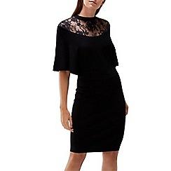 Coast - Remy lace trim knit dress