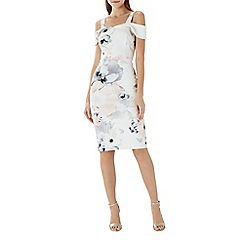 Coast - Arguta floral shift dress