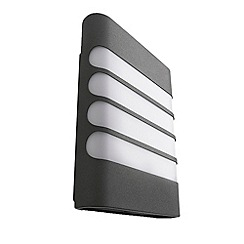 Litecraft - Philips raccoon outdoor Dark Grey led wall light