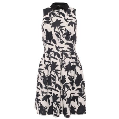 Closet Black floral print collar scuba dress - . -