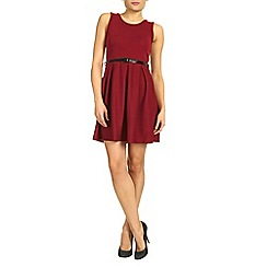 Petals - Wine plain skater dress