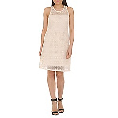 Pussycat London - Cream lace skater dress
